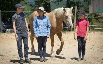 Ferme Équestre de Saint Gauzy – Au bonheur des chevaux